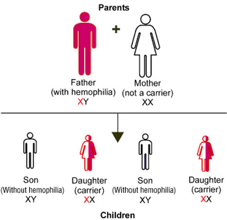 Genetic-Inheritance